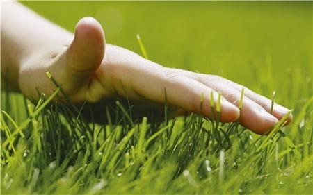 EM-Rasenpflege-027-30cm.eps