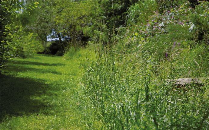 EM-Garten-079-47cm