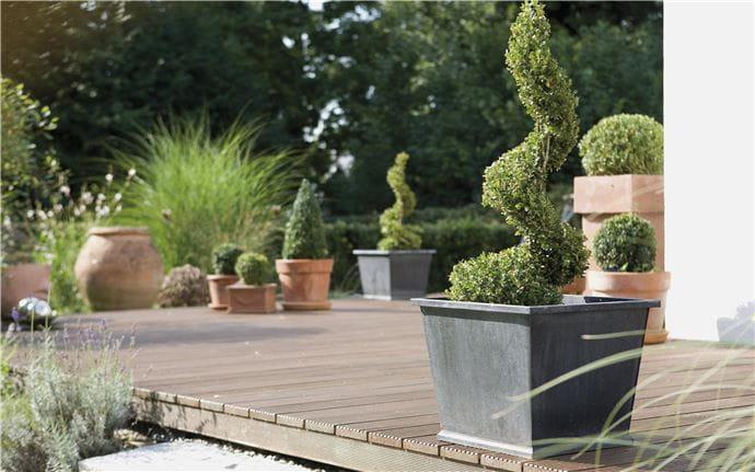 Topiary-E-001