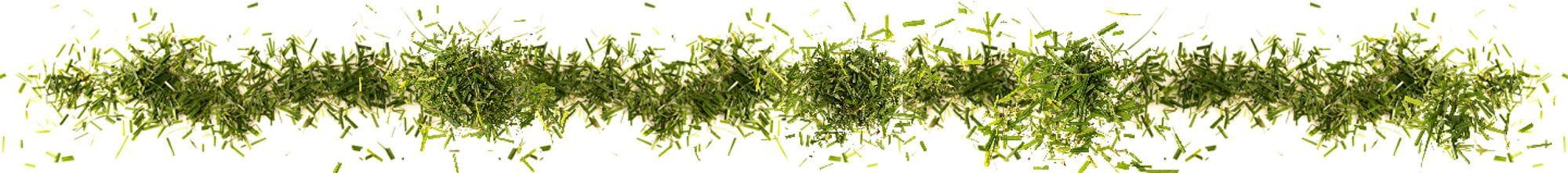 grass breaker