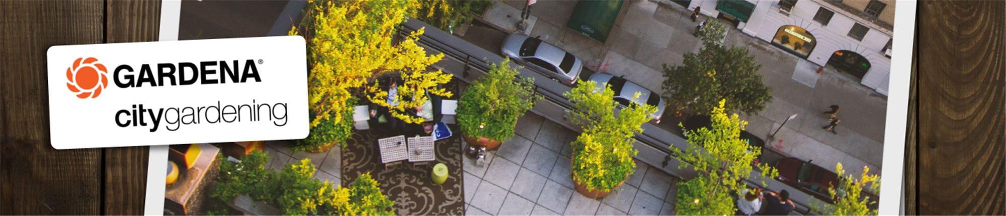 Pflanzen Fur Die Dachterrasse