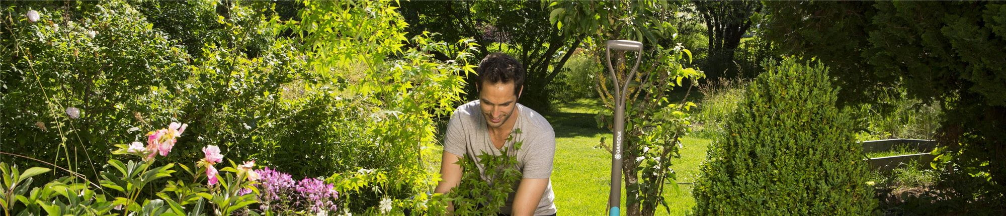 Que planter au balcon et au jardin en novembre ? - GARDENA
