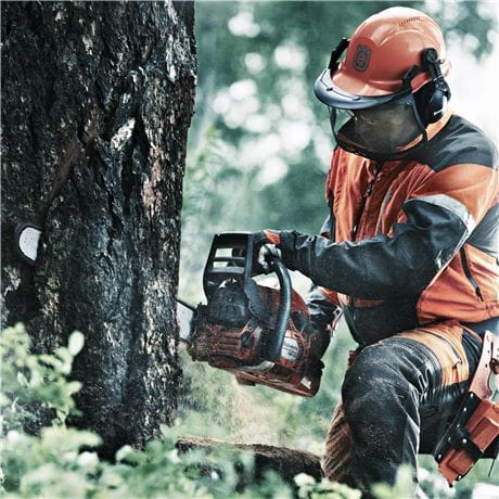 Safety equipment when felling trees