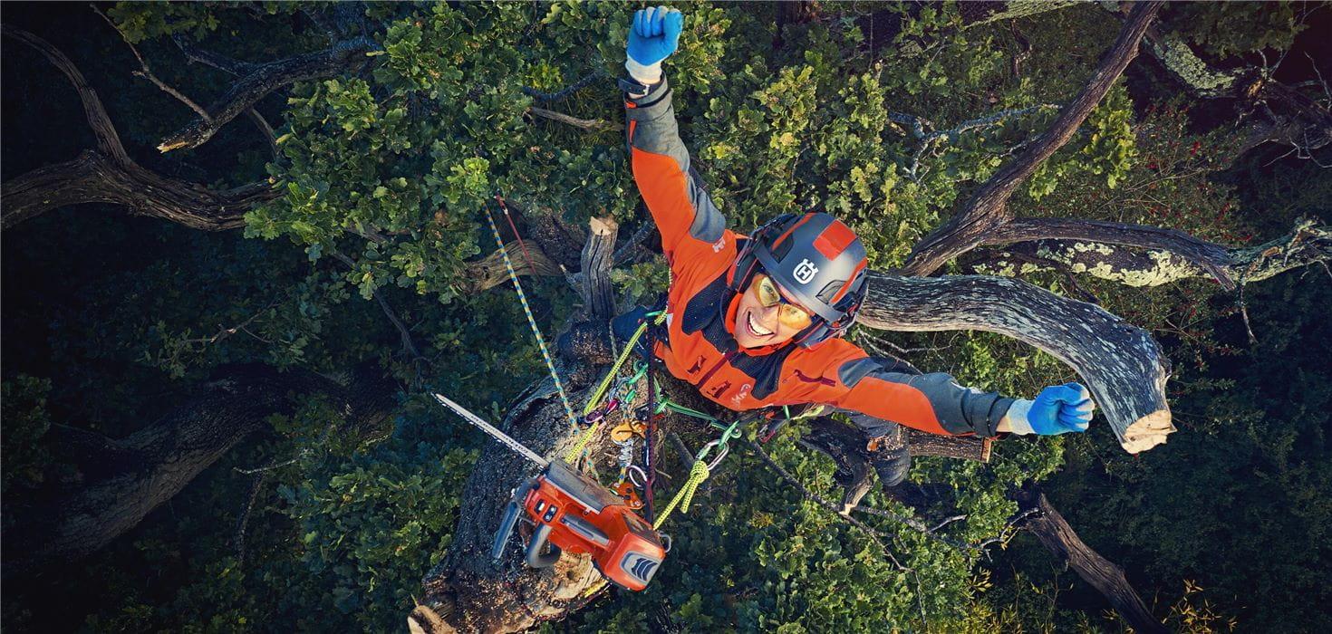一些图像 -  Jo欢呼与武器,并且在树上看到休息