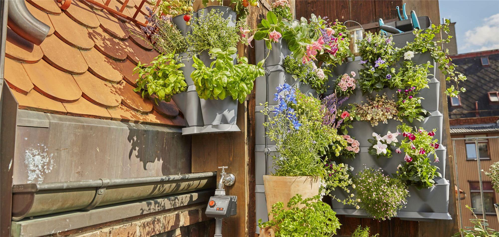 Mur Végétal Extérieur Palette comment installer un mur végétal sur le balcon - gardena