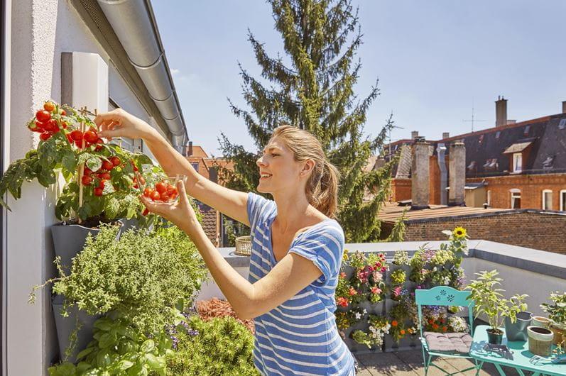 Gardena city gardening balcony NatureUp! Basic Set Vertical