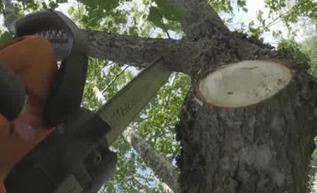 Pro Battery Series - Chainsaw Eng