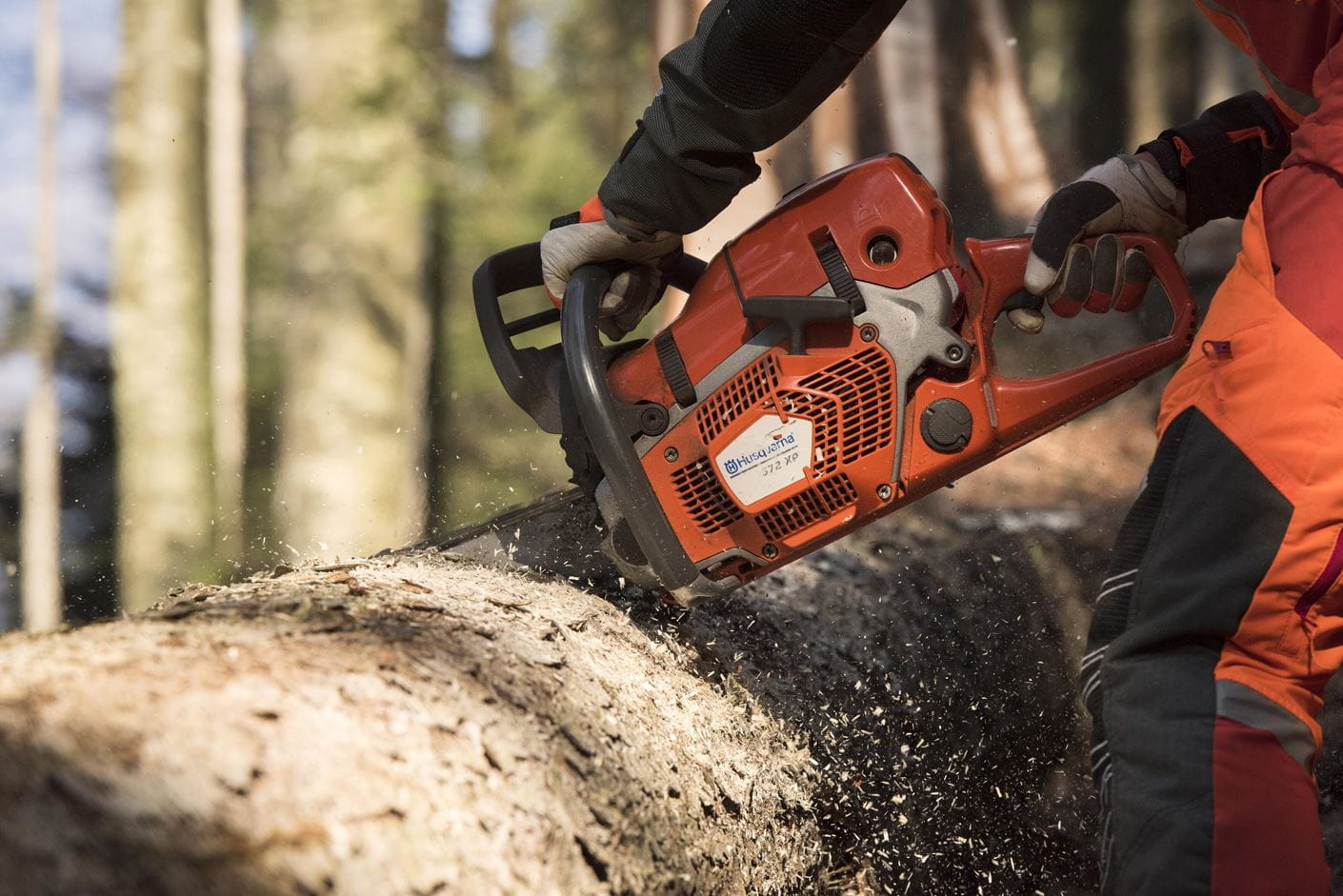 Chainsaw logger - Switzerland