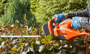 hedge trimmer how-to homepage