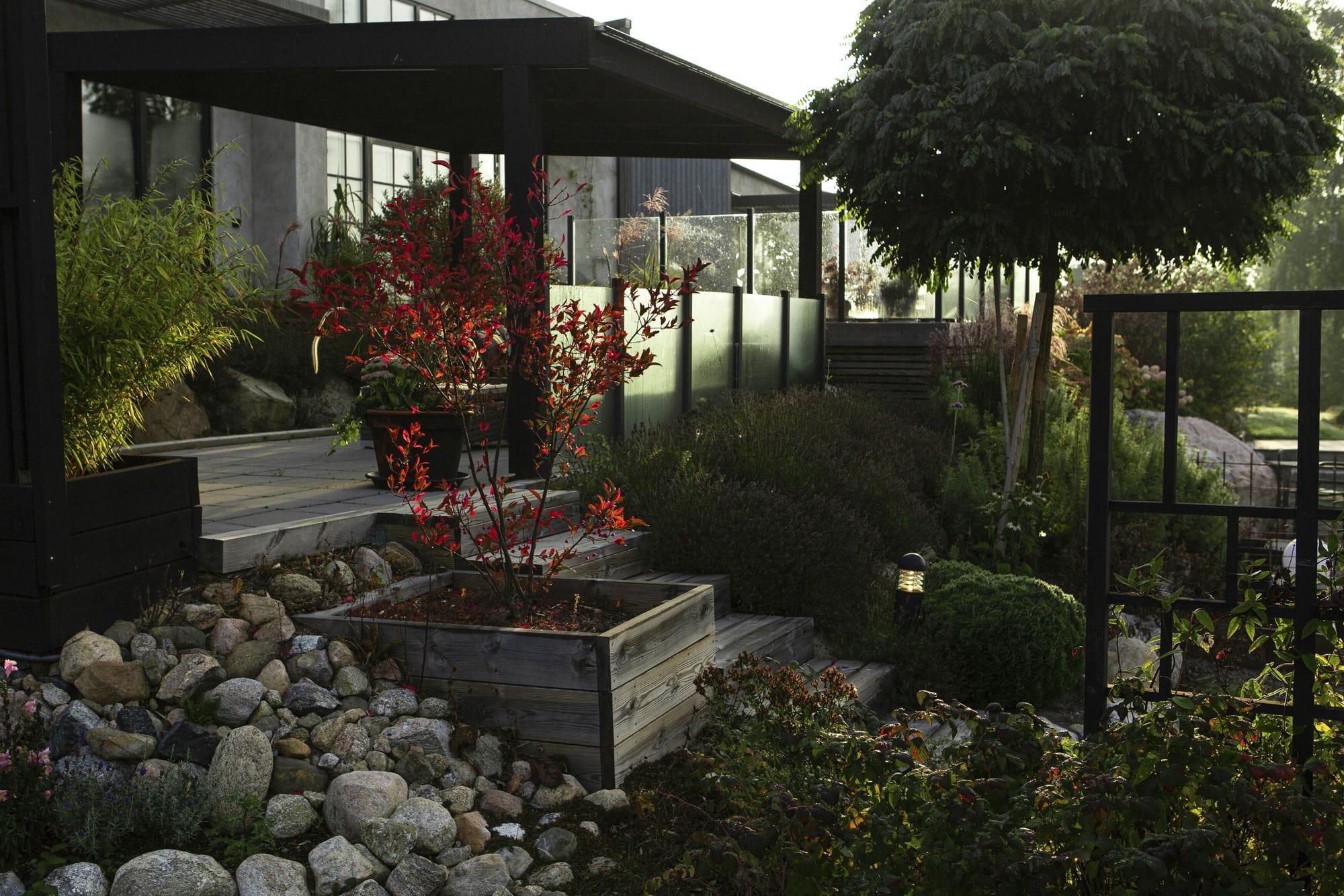 一些花园灵感来源