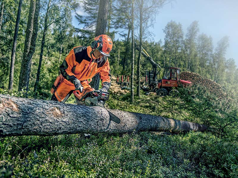 Husqvarna 560 XP Chainsaw cross cutting